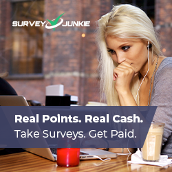 Take Surveys, Get Paid.