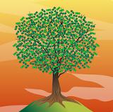 Money Tree - Grow Real Money